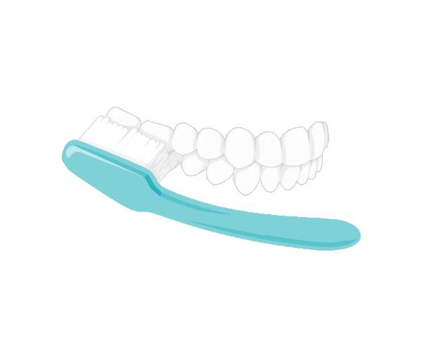 Zähne richtig putzen  Außenflächen seitlich | In kreisenden Bewegungen nach vorn