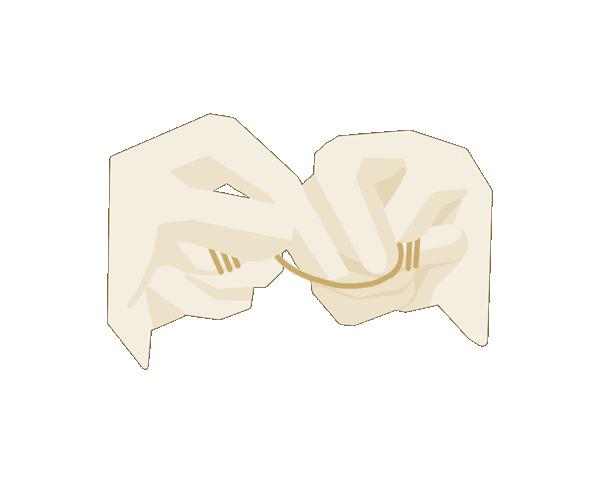 Zahnseide  Nach 1 - 2 Zahnzwischenräumne die Seide links einmal ab- und rechts einmal aufrollen, um ein frisches Stück zu haben. Links fortfahren – linker Daumen für die oberen Zähne links.