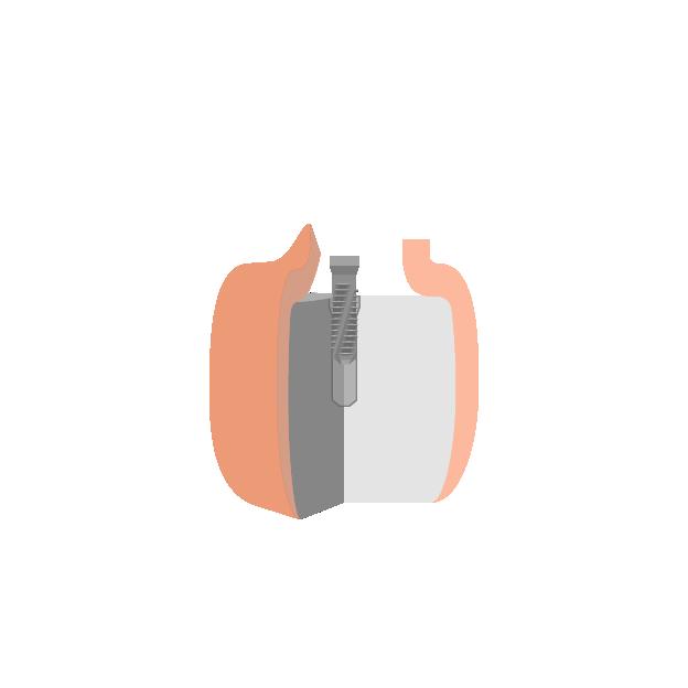 Implantate  Einsetzen des Implantats